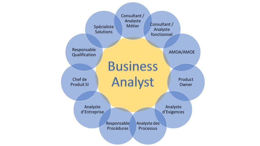 business analyst, consultant métier, analyste métier, consultant fonctionnel, analyste fonctionnel, AMOA, AMOE, product owner, analyste d'exigences, analyste des processus, responsable procédures, analyste d'entreprise, chef de produit SI, responsable qualification, spécialiste solutions