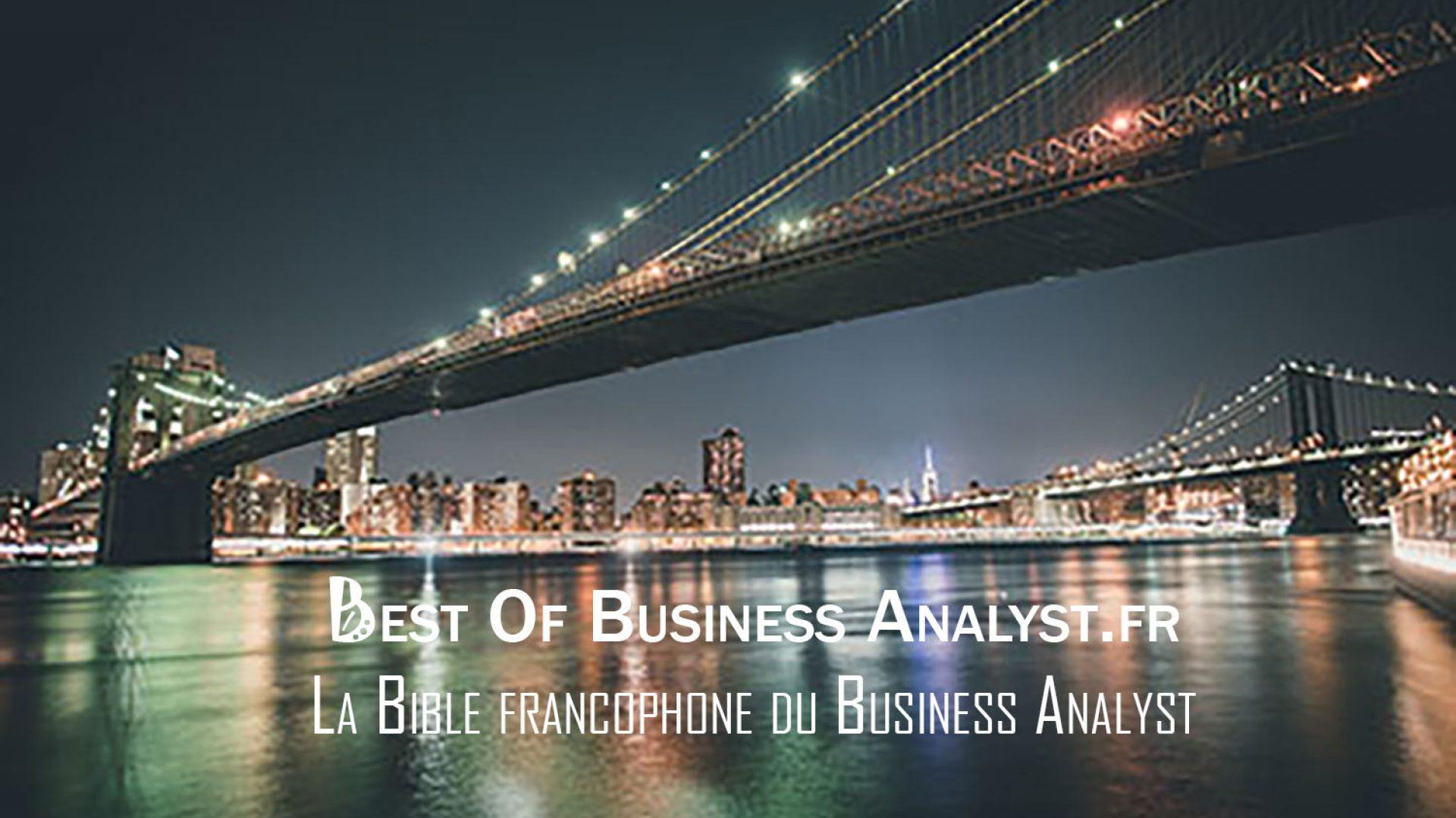 bestofbusinessanalyst.fr