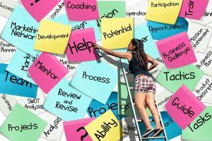 Les activités d'un Business Analyst junior